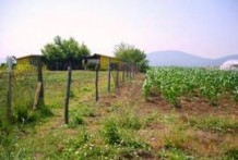 Land For Sale near Bourgas