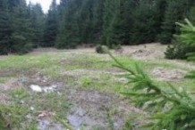Land For Sale near Smolyan
