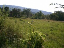 Land For Sale near Lovech