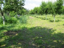 Land For Sale near Stara Zagora